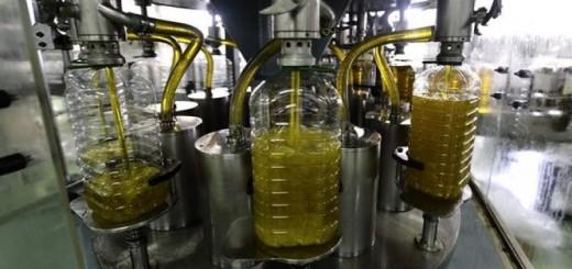 envasado del aceite
